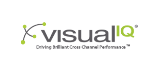 Logo visualiq