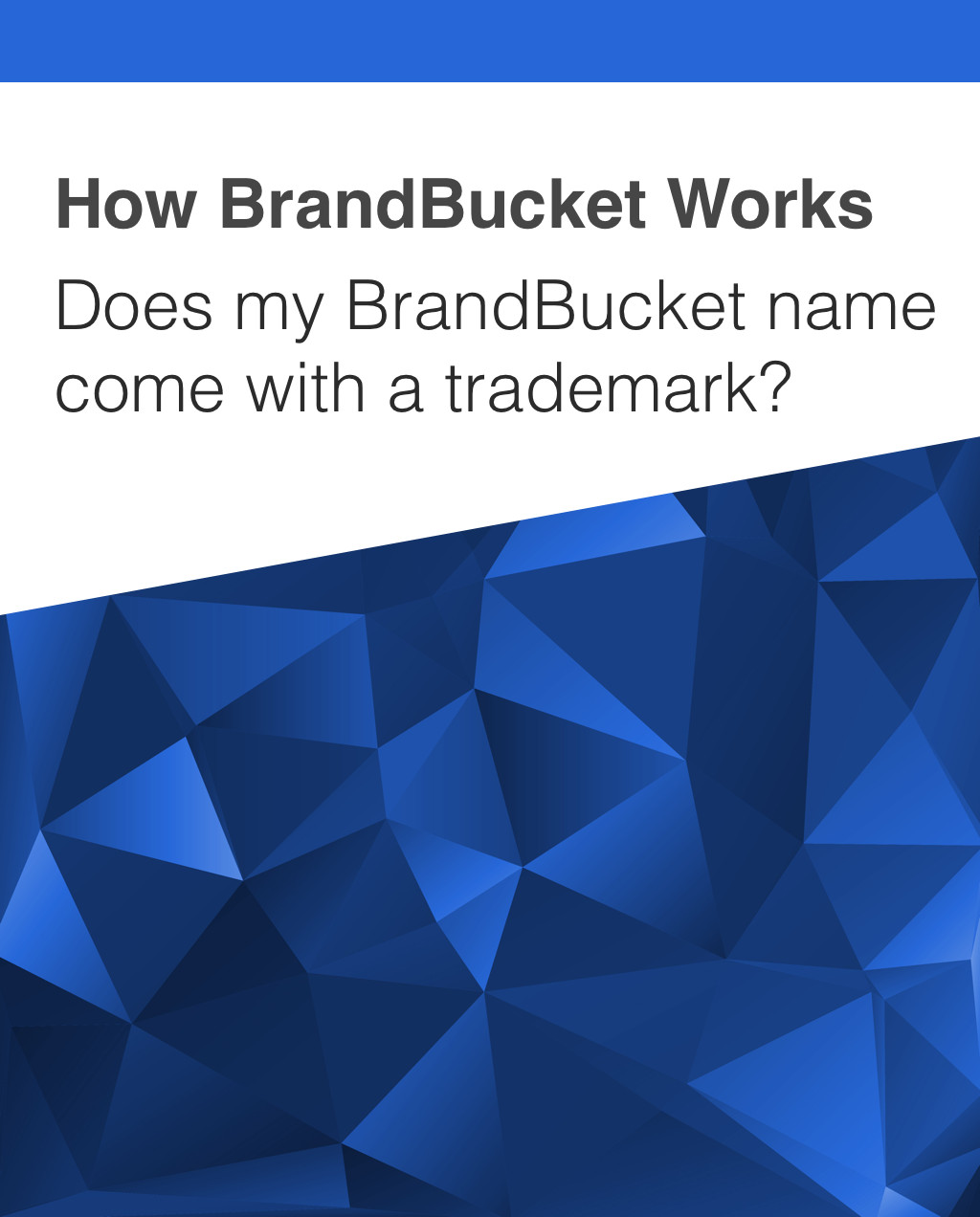 Buying a Business Name from BrandBucket