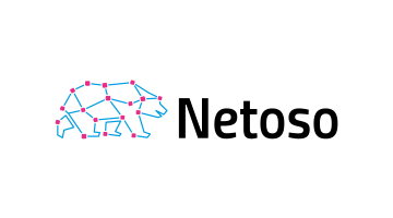 Logo for Netoso.com