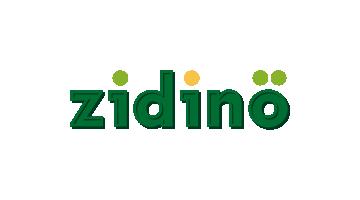 zidino.com