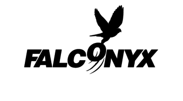 Logo for Falconyx.com
