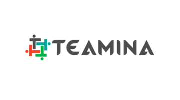 Logo for Teamina.com